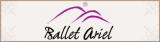 Ballet Ariel Company and School