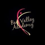 Bay Valley Academy