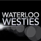 Waterloo Westies