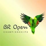 The Brazilian Open