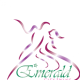 Emerald City Swing