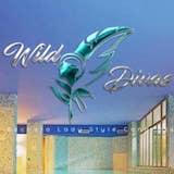 Wild Divas Congress