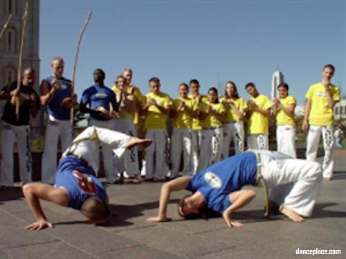 The Brazilian Capoeira Academy