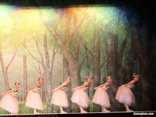 Gulf Coast Ballet